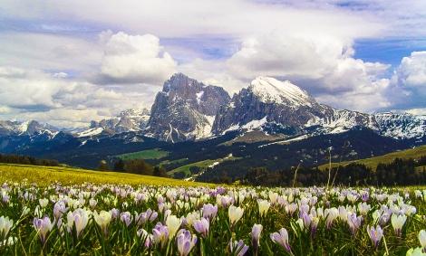 Alpe Di Siusi 4