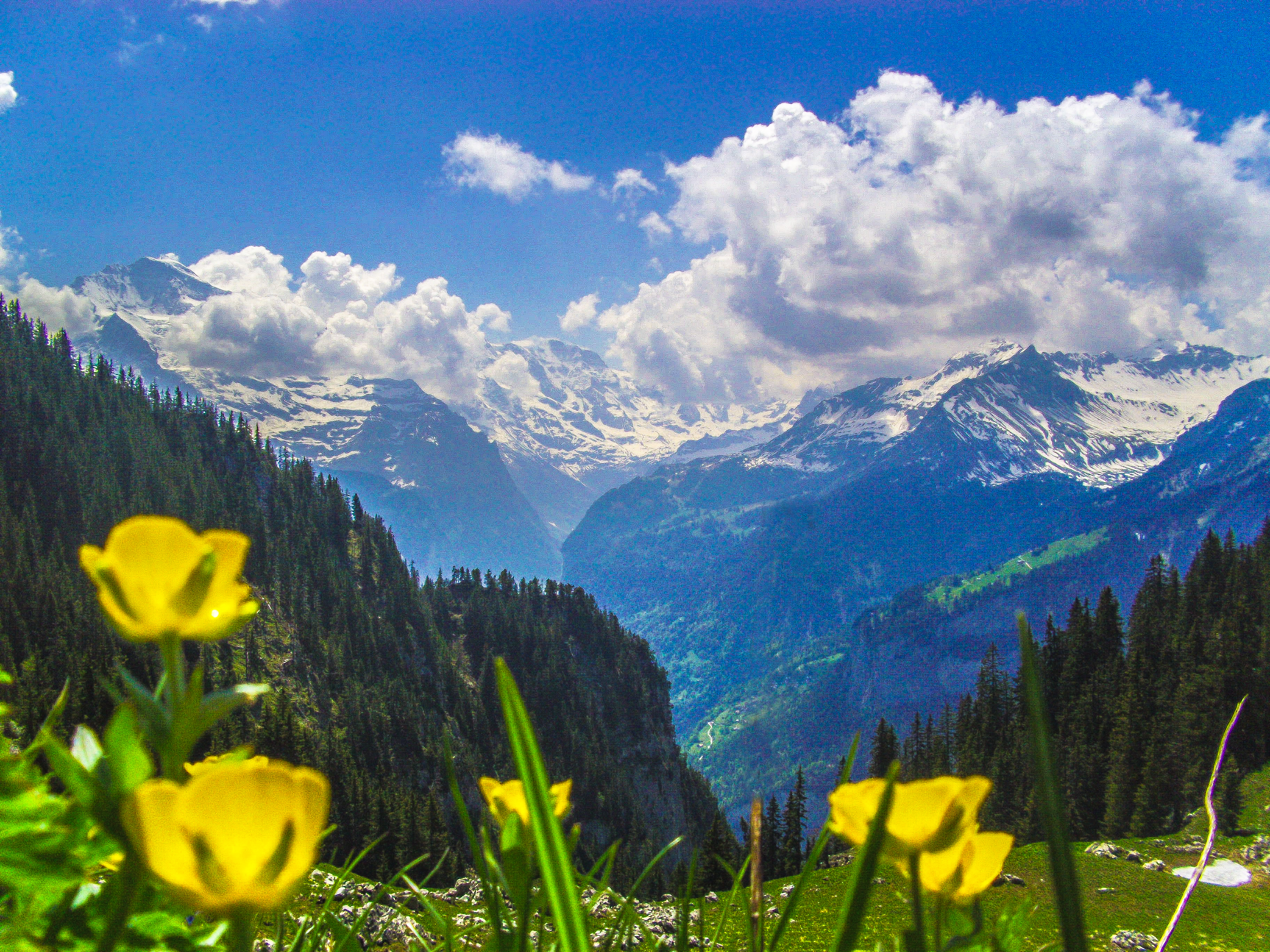 Swiss Alps Wunderscapes Travel