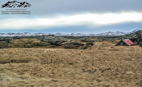 iceland farmland