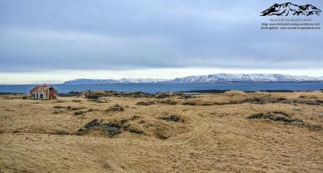 reykjavik sea