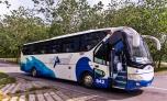 Viazul Bus